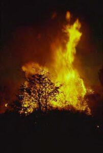 incendios_0